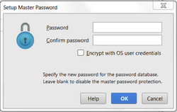 Setup master password